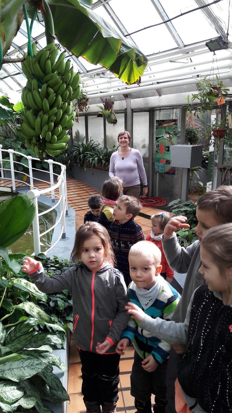 Botanická zahrada 5
