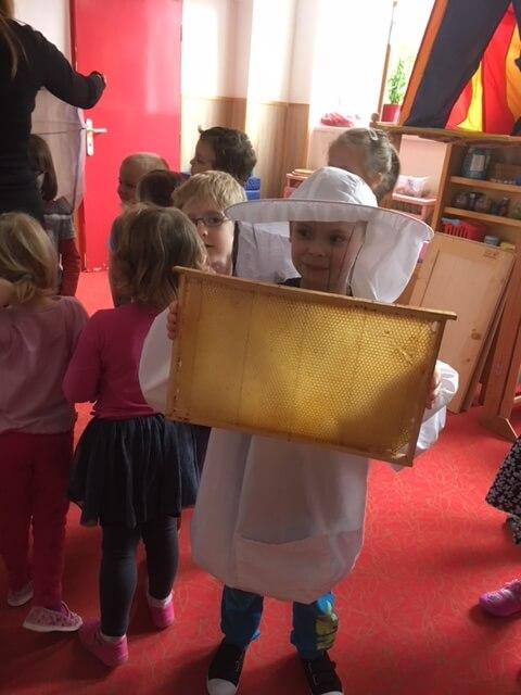 Včely13